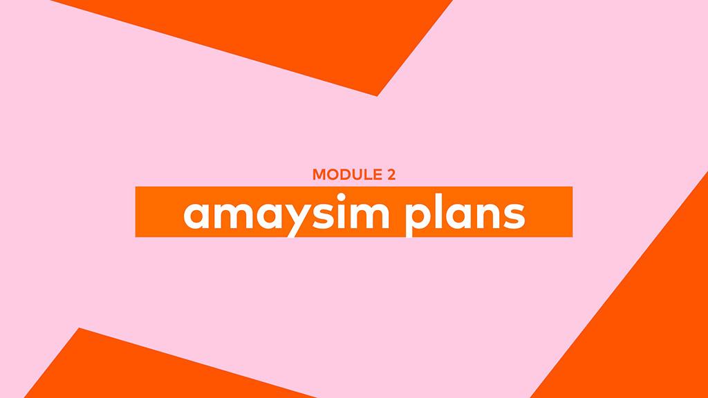 amaysim plans